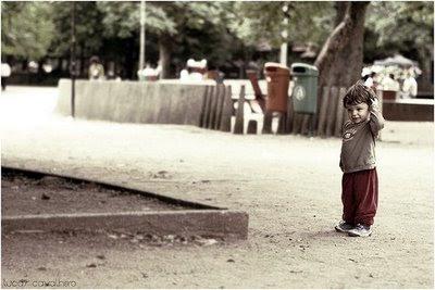 Lucas Cavalheiro -- Flickr.com