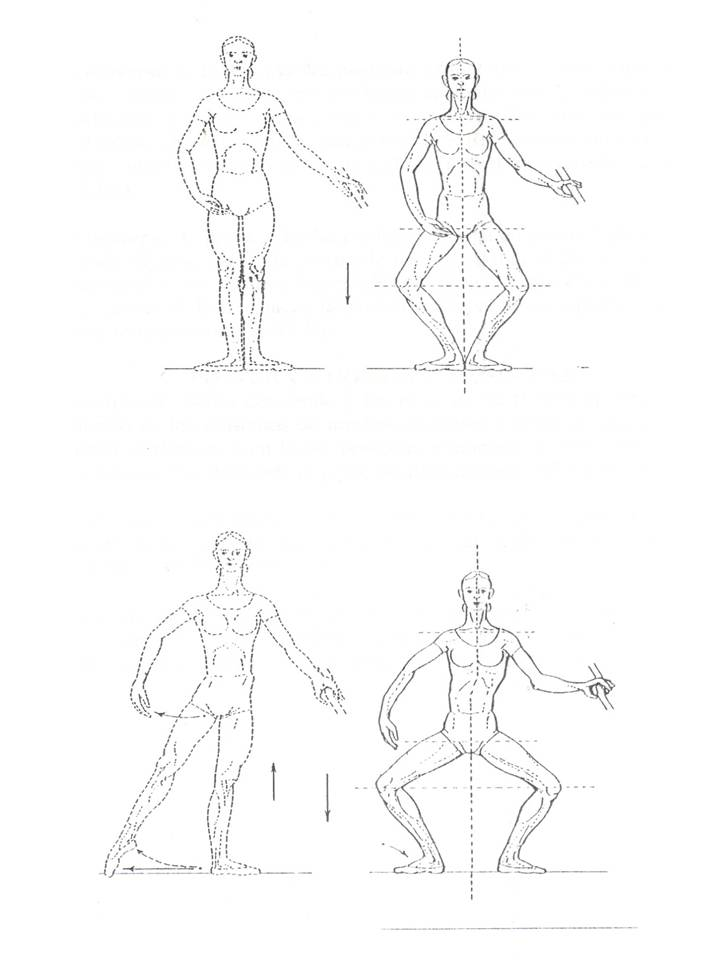 demi plie paper 1 Demi-plié in grand-plié, the heels are raised and the body is lowered to such a  degree that the thighs become  these studies, however, did not clearly  document  br j sports med: first published as 101136/bjsm335340 on 1  october 1999.