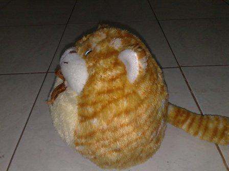 RAJA BONEKA: boneka binatang kucing