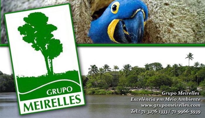 Grupo Meirelles