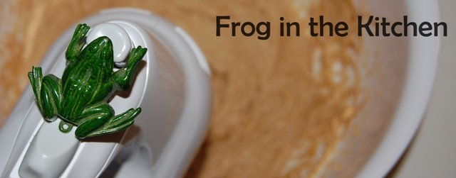 Frog In the Kitchen