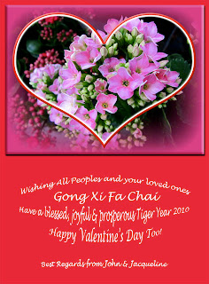2-in-1 greeting card for Chinese New Year 2010 and Valentine's Day
