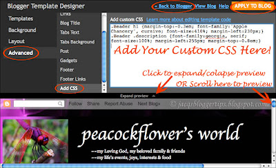 Screen shot of Blogger's Template Designer to illustrate how-to add custom CSS