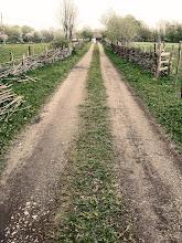 En grusväg på Österlen