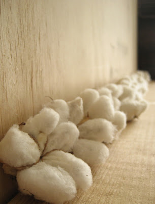 Erin Curry art- cotton bolls homegrown