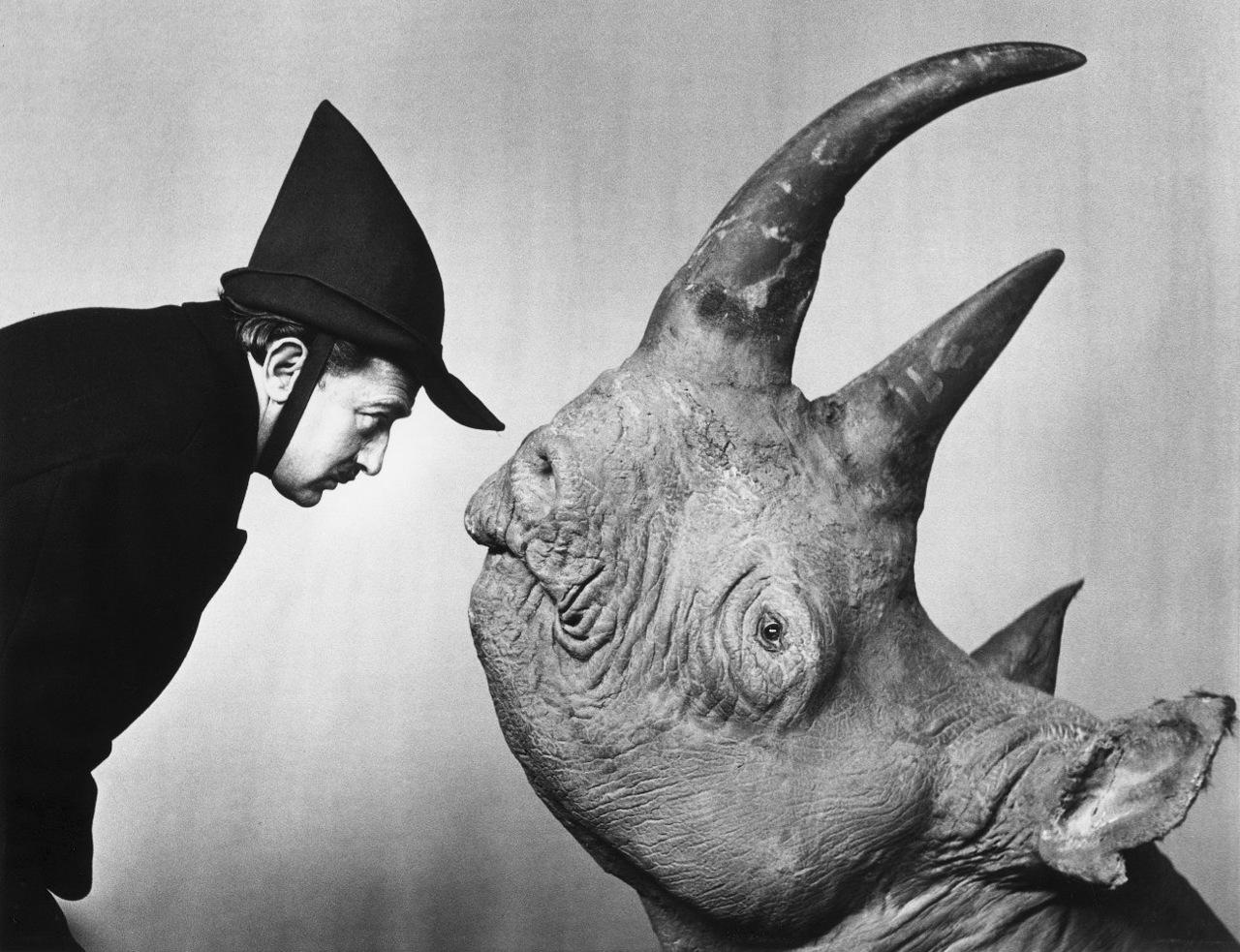 http://1.bp.blogspot.com/_yy5WF1i4o-8/S6rkOtyi8XI/AAAAAAAAA2k/o1pwX2X1lGU/s1600/Philippe+Halsman.Dali.Dali+with+Rhinoceros.1956.1981.jpg