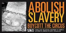 Boicot a los circos con animales