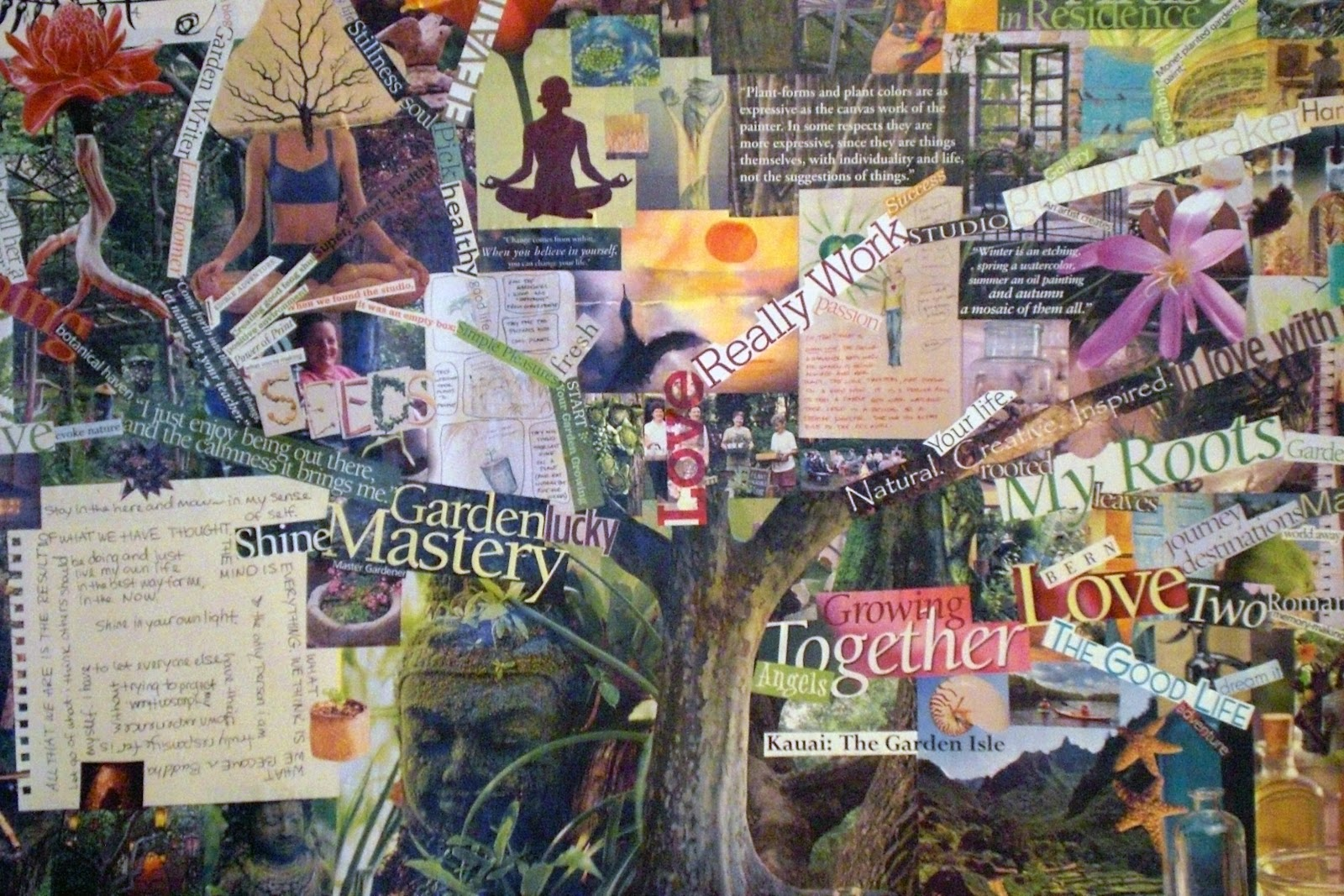 the violet fern project vision board