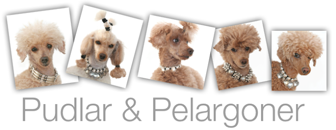 Pudlar &amp; Pelargoner