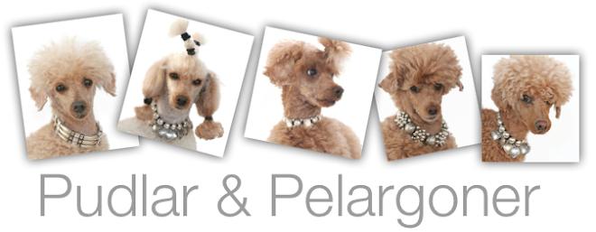 Pudlar & Pelargoner