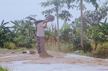 Petani di Desa Benowo