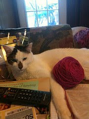 My Knitting Helper