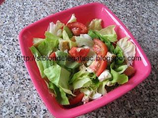 salata cu snitel si rosii