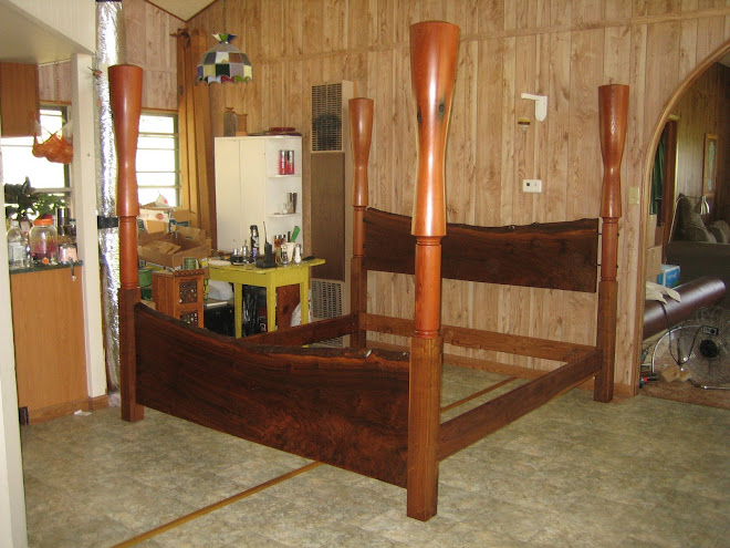 Sentinel Bed