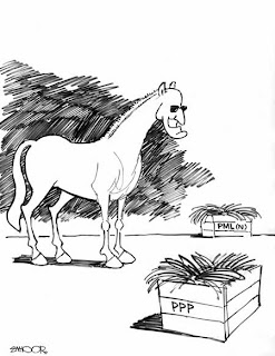 dailytimes cartoon pakistan newspaper
