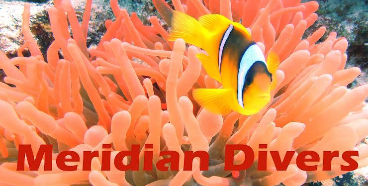 Meridian Divers!