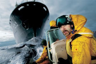 whale wars tv show reviews