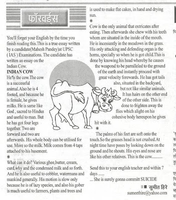 Essay on plastic world in hindi