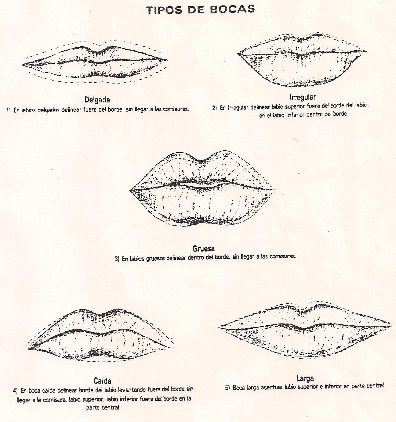 tipos de labios ahora el toque final de nuestro maquillaje unos ...