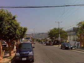 PANORAMICA DE LA COMUNIDAD