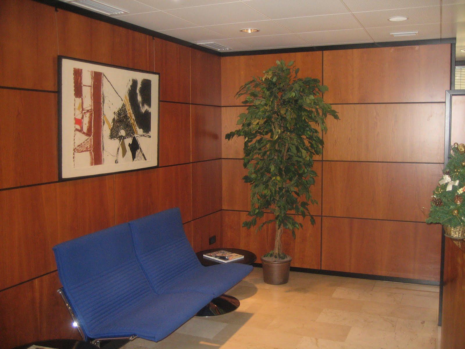 Alquiler oficinas lujo palma for Oficinas de alquiler