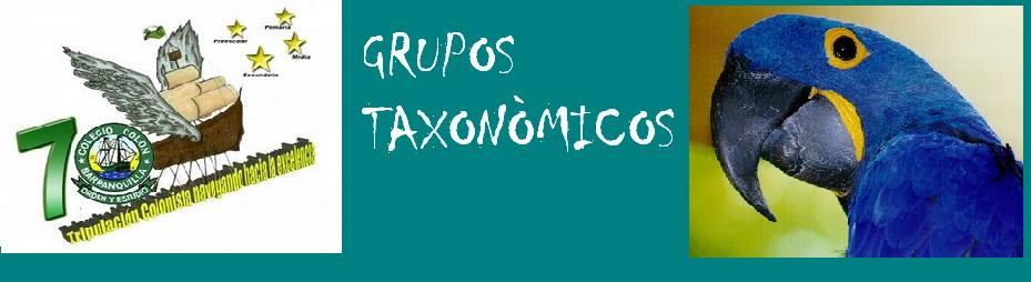 Grupos Taxonòmicos
