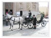 coches caballos