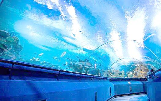 Kuala Lumpur Aquaria