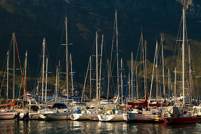 Boats in harbor, Hout Bay, South Africa © Matt Prater