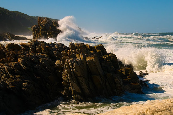 Coastline of Tsitsikamma National Park, South Africa © Matt Prater