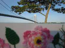 The Verrazano in NY...my birthday card...