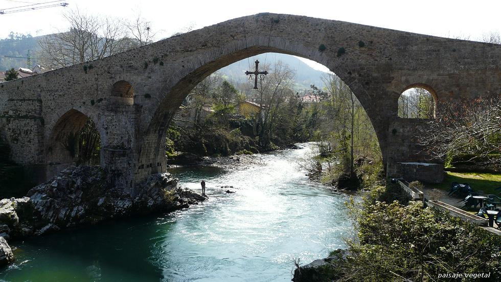 se me cae la baba Beyos+puente+Cangas+de+Onis+pescador