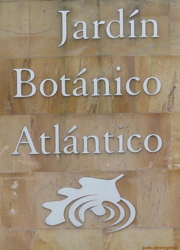 Paisaje vegetal jard n bot nico atl ntico de gij n i for El jardin botanico gijon