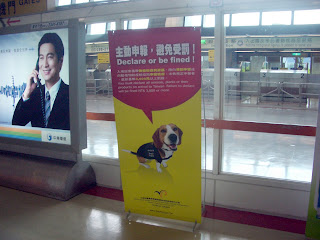 customs sniffing beagle hound dog in taiwan asia airport