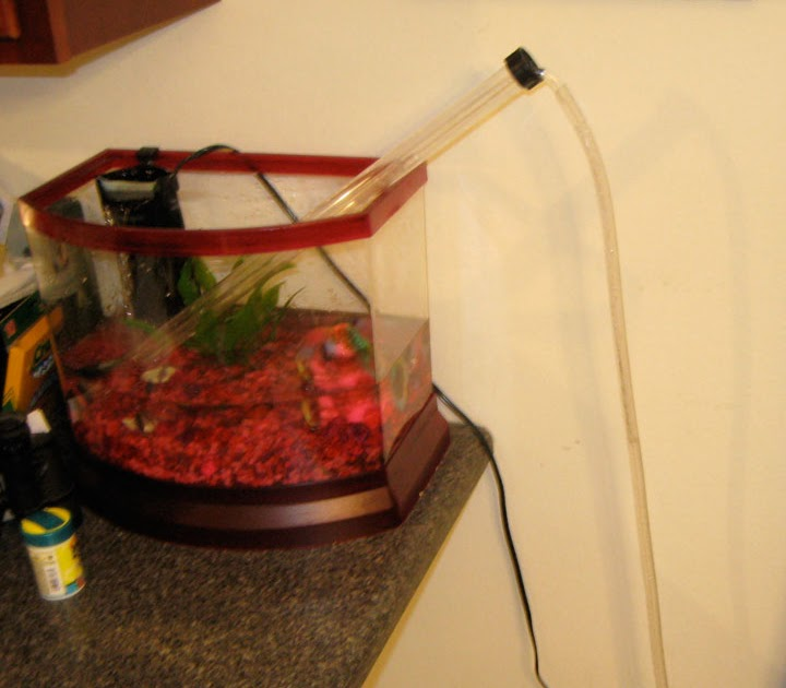 Homebrew and chemistry multitasking tools for Fish tank siphon