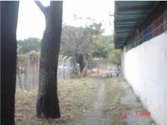 areas verdes por la parte de atras de los kinder