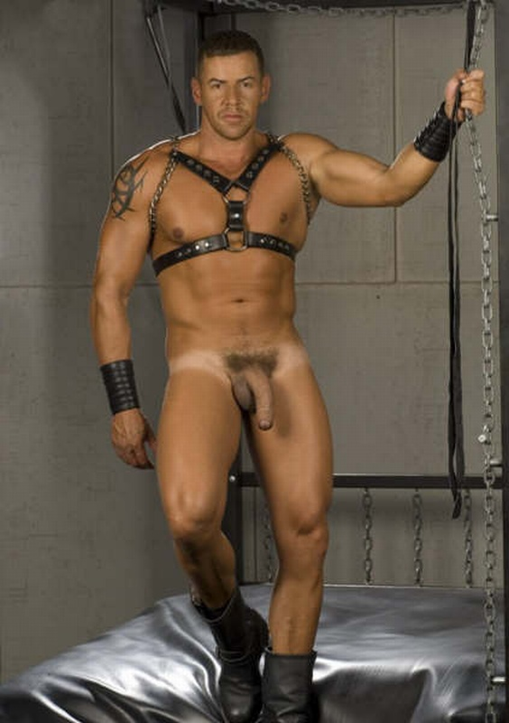 free gay stud in leather