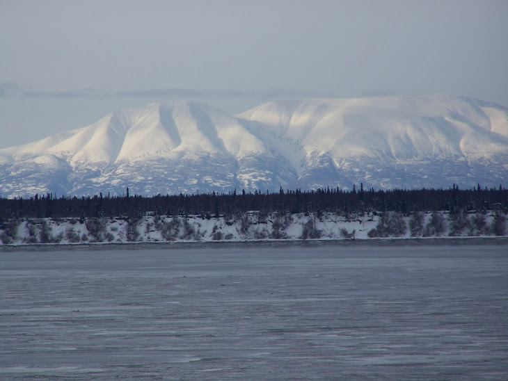 Mt Susitna and Cook Inlet