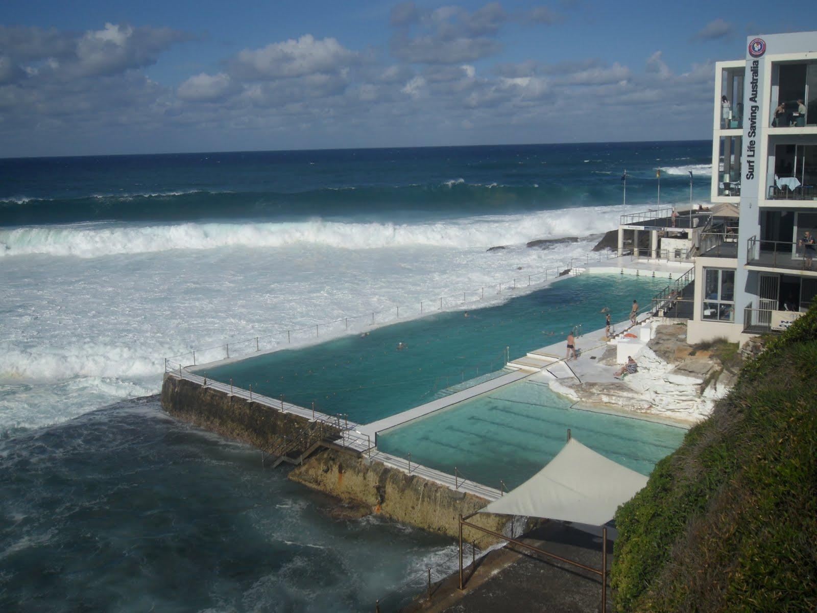 Les wallabies de l 39 ainan 3 me jour sydney bondi beach for Piscine qui deborde