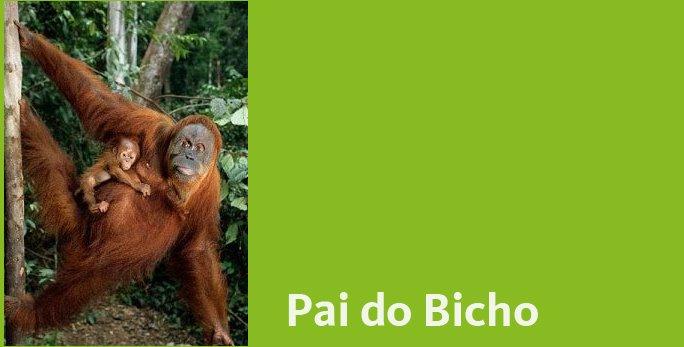 Paidobicho