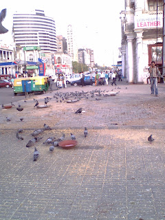 not yet trafalgar square!