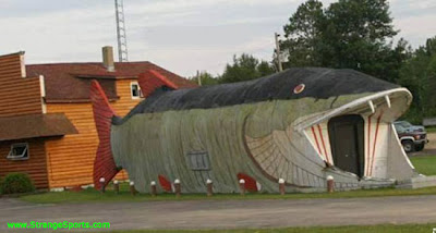 Even More Crazy House Designs!