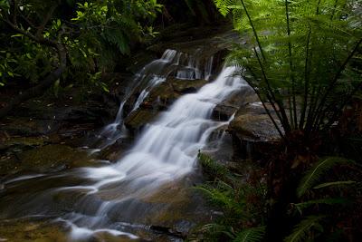 Leura Cascades - Blue Mountains, Australia