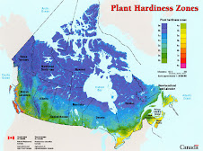 Hardiness Zones Canada