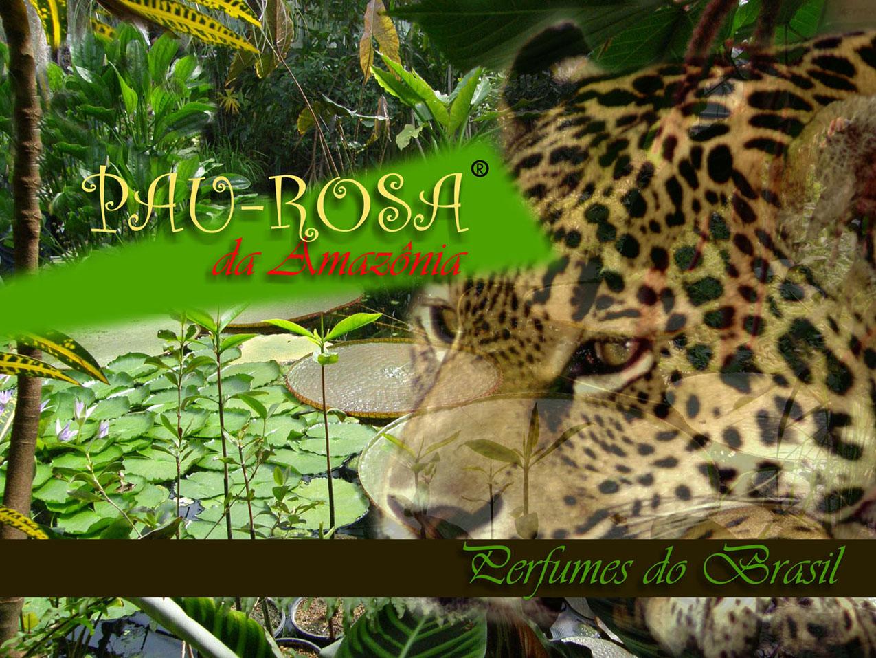 PAU ROSA DA AMAZÔNIA #44820C 1275x957