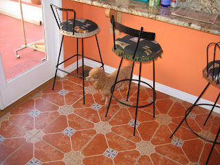 Kitchen Bar Stool Photos