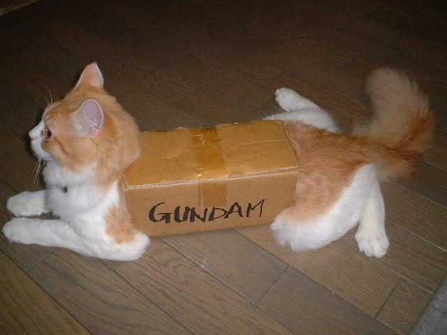 awesome-cosplay-Gundam-Cat.jpg