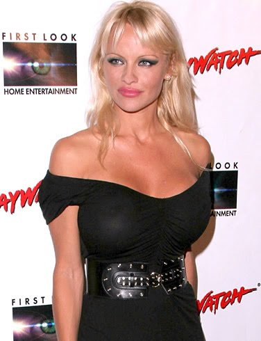 pamela anderson home video