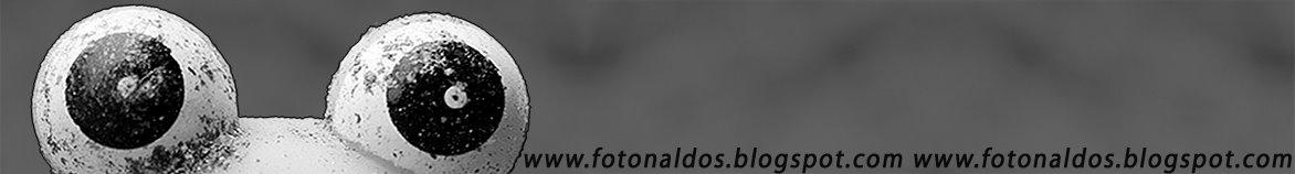 fotonaldos