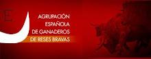 AGRUPACION ESPAÑOLA DE GANADEROS DE RESES BRAVAS